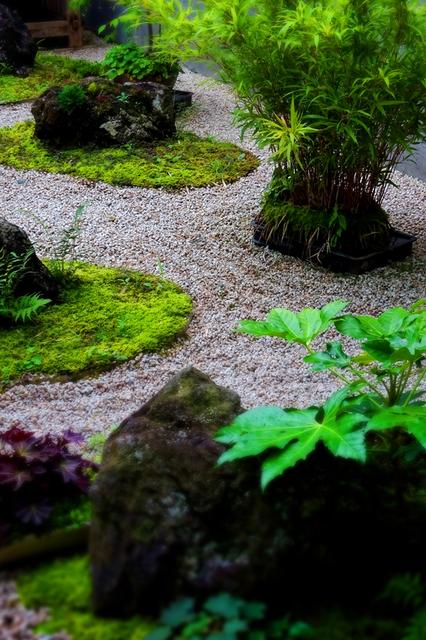28アクアマリン順08盆栽の庭s★DSC07980wx.jpg